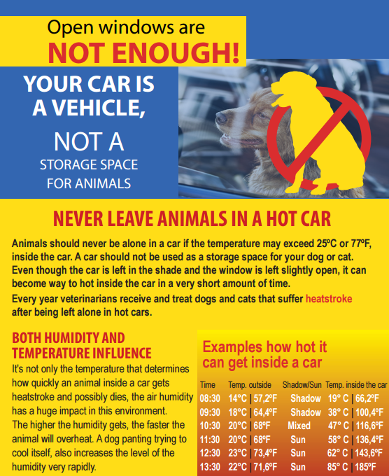 image of flyer showing how dangerous it is to leave animals in a hot car